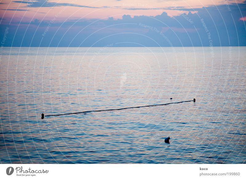 Abendmeer Sommer Meer Wasser Himmel Wolken Sonnenaufgang Sonnenuntergang Wetter Küste Seil Linie blau rosa schwarz Horizont Gedeckte Farben Außenaufnahme