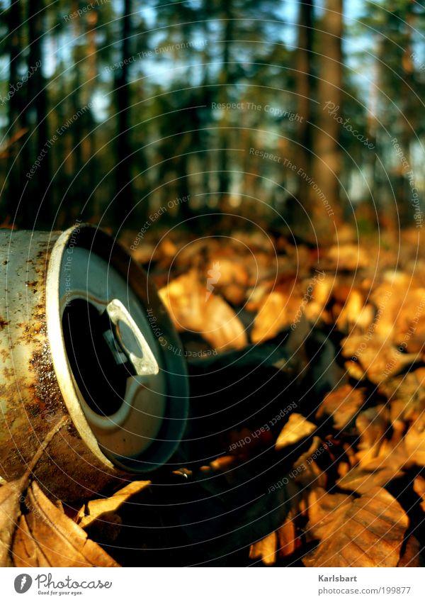 morgens. deutschland. Natur Baum Blatt Wald Umwelt Herbst dreckig Müll Rost Umweltschutz Herbstlaub herbstlich Umweltverschmutzung Dose zurücklassen Verpackung