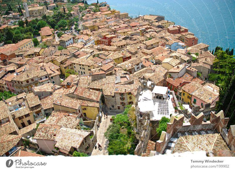 Über den Dächern von....... Ferien & Urlaub & Reisen Tourismus Städtereise Sommerurlaub Haus Schönes Wetter Küste Bucht See Gardasee Malcesine Italien Dorf