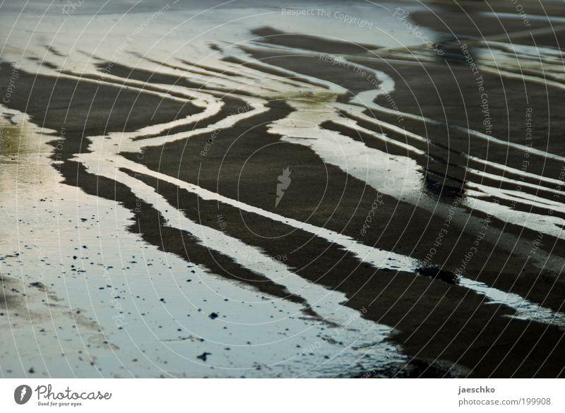 Mini-Mississippi-Delta Natur Wasser dunkel Umwelt Straße Traurigkeit grau Regen glänzend dreckig trist gefährlich nass Zukunftsangst Asphalt graphisch