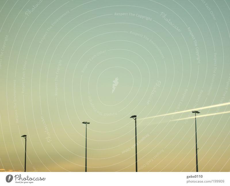 i i i i Himmel blau Ferien & Urlaub & Reisen warten Wetter Umwelt Luftverkehr Klima Flughafen Schönes Wetter ausdruckslos Scheinwerfer Blauer Himmel Klimawandel