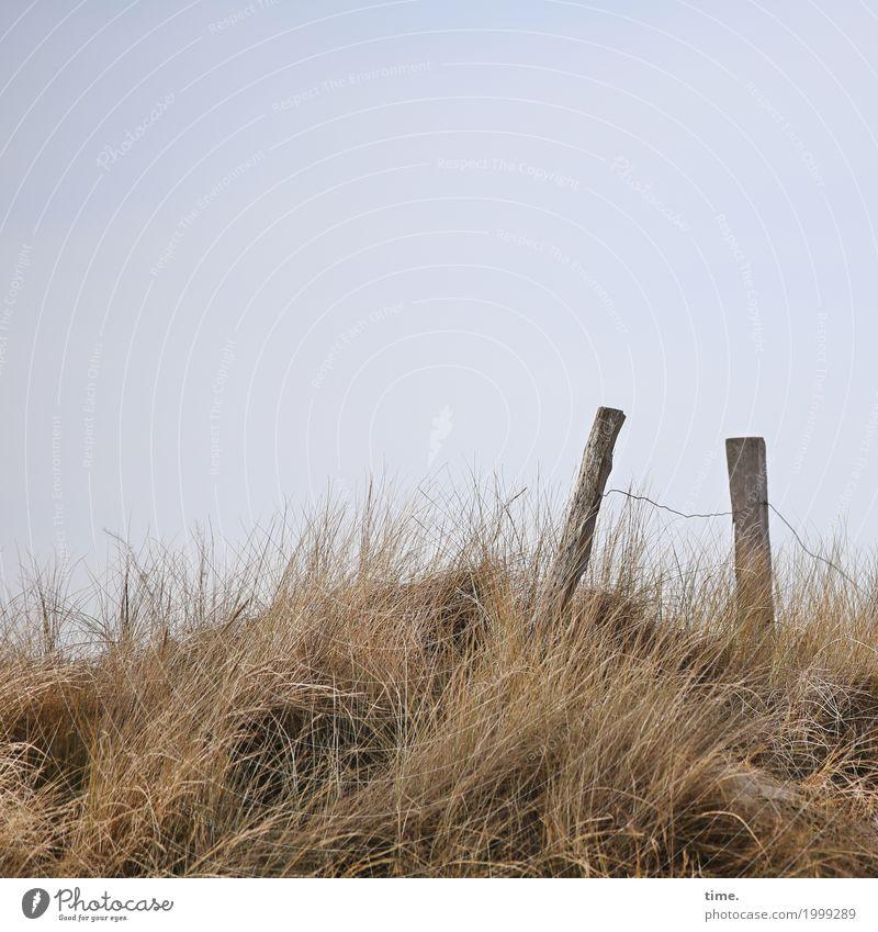 Spannung|sabfall Ferien & Urlaub & Reisen Zaun Zaunpfahl nur Himmel Nutzpflanze Küste Stranddüne Dünengras Naturschutzgebiet Holz Metall Schilder & Markierungen