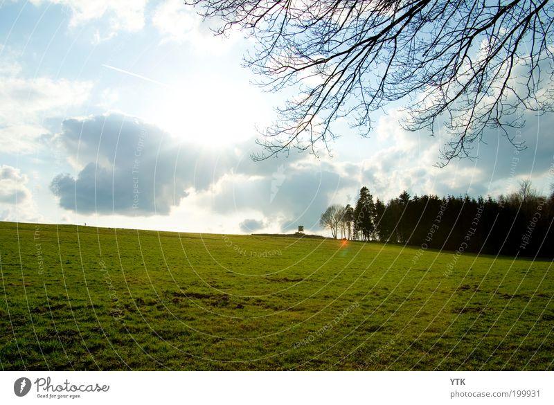 Saxon Meadow :-) Natur Himmel Baum Sonne grün Pflanze Wolken Ferne Wald Frühling Wärme Landschaft Feld glänzend Umwelt Ast