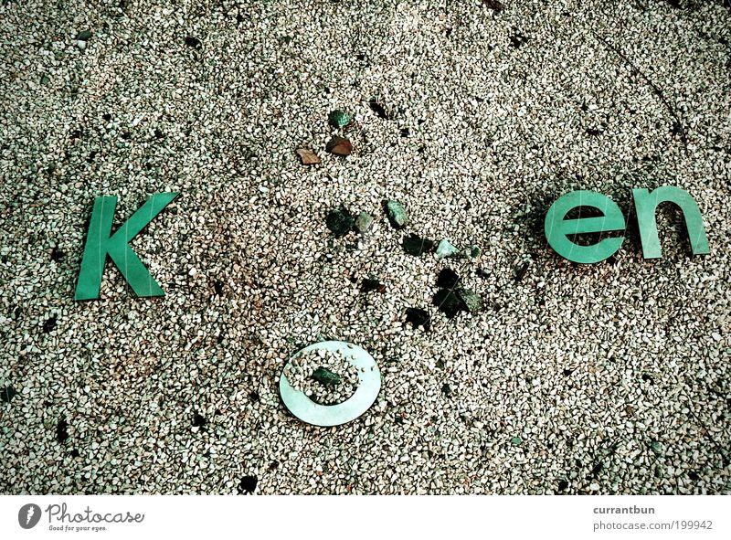 vulgär sind nur die anderen grün Stein Schriftzeichen Buchstaben Wort Vogelperspektive Kieselsteine Schwerpunkt Wortspiel Wortgefecht