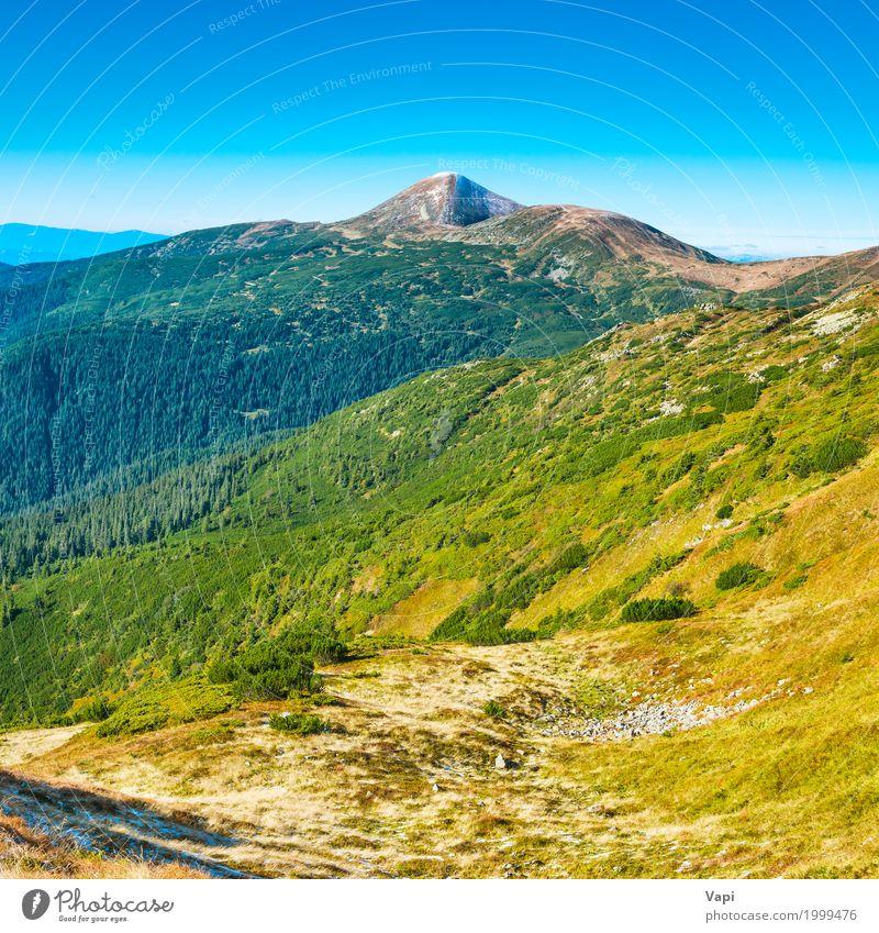 Spitze des Berges im grünen Tal Himmel Natur Ferien & Urlaub & Reisen Pflanze blau Sommer Farbe weiß Baum Landschaft Berge u. Gebirge gelb Frühling Wiese