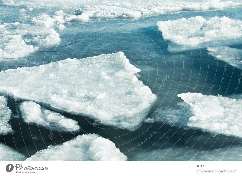 Schmelzwasser Umwelt Natur Landschaft Winter Klima Klimawandel Eis Frost Schnee Küste Ostsee Meer außergewöhnlich eckig fantastisch kalt Spitze blau weiß
