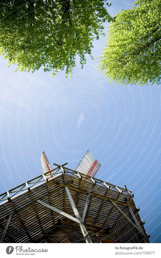 Don Quijotes Mittagspause Himmel Baum Sommer Ferien & Urlaub & Reisen Frühling Freiheit Gebäude Ausflug Tourismus Bauwerk Wahrzeichen Schönes Wetter Geländer