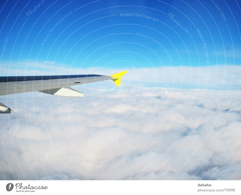 fly high Himmel blau Wolken Flugzeug fliegen Technik & Technologie Flügel Elektrisches Gerät