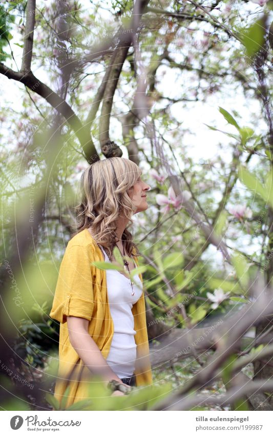 Magnolia Ausflug Freiheit feminin Junge Frau Jugendliche 1 Mensch Umwelt Natur Frühling Schönes Wetter Pflanze Baum Blatt Blüte Park blond Locken beobachten