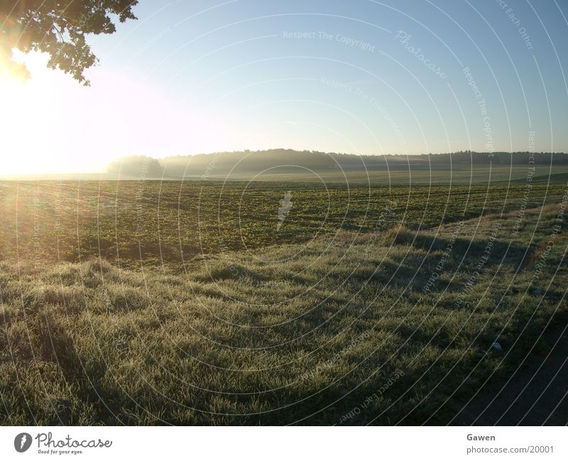Morgennebel Nebel Sonnenaufgang Licht Feld Ferne Seil Natur