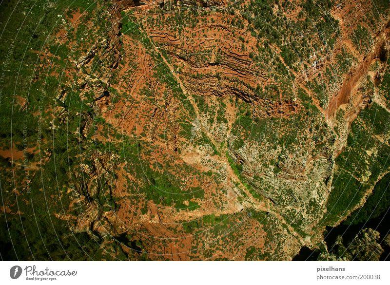 Höhenflug Natur Pflanze Ferien & Urlaub & Reisen Sommer Ferne Landschaft Freiheit Berge u. Gebirge Erde fliegen Schönes Wetter Landkarte Schlucht Klimawandel