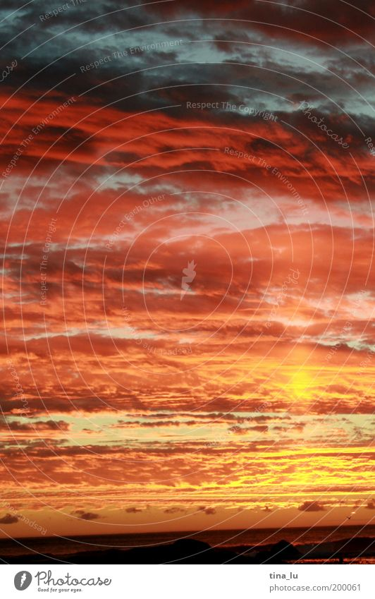 sunset in south africa Natur Meer Sommer Wolken Gefühle Stimmung Erde Afrika Urelemente bizarr Sonnenuntergang Abenddämmerung Südafrika Sonnenstrahlen