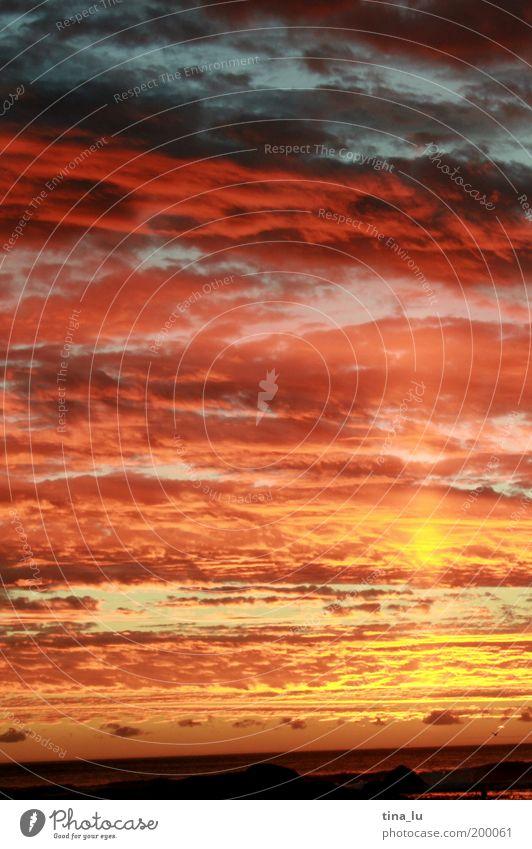 sunset in south africa Natur Urelemente Erde nur Himmel Wolken Sonnenaufgang Sonnenuntergang Sommer Meer Südafrika Afrika Gefühle Stimmung mehrfarbig