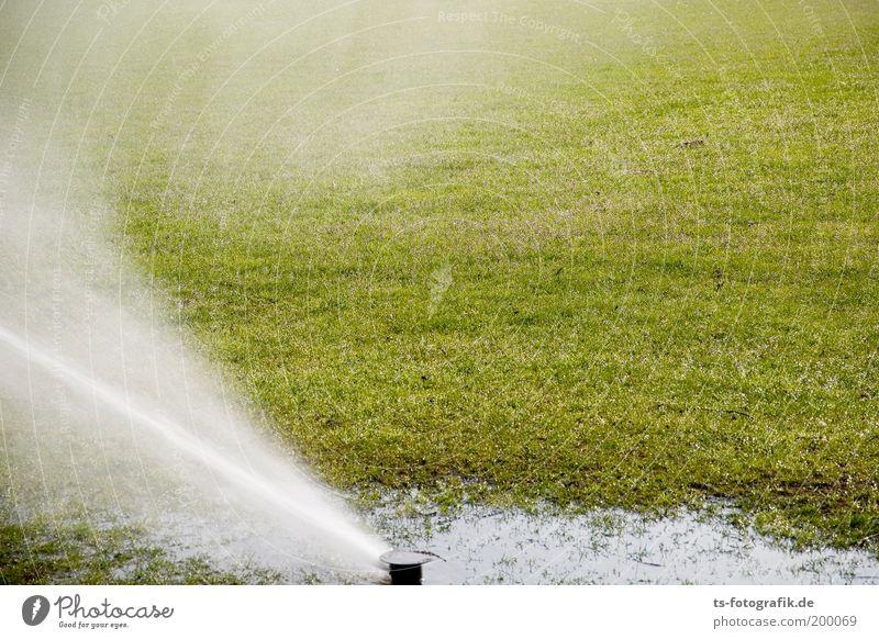 nass grass spass Sportstätten Fußballplatz Weltmeisterschaft Südafrika Gartenarbeit Gärtner Wasser Wassertropfen Sommer Klimawandel Wetter Schönes Wetter Regen