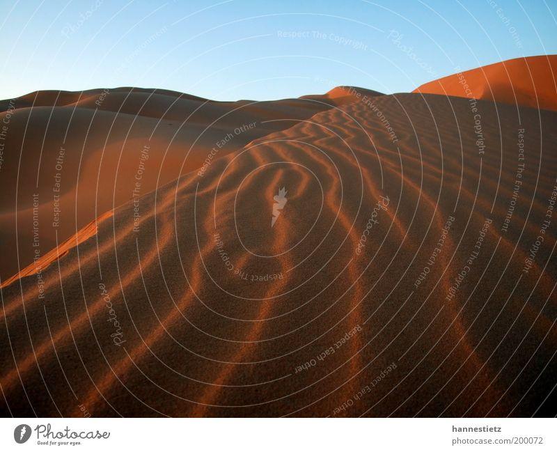 Sahara Ferien & Urlaub & Reisen Tourismus Ferne Freiheit Natur Sand Wüste Einsamkeit Libyen Windrippel Düne Farbfoto Außenaufnahme Menschenleer Abend Schatten