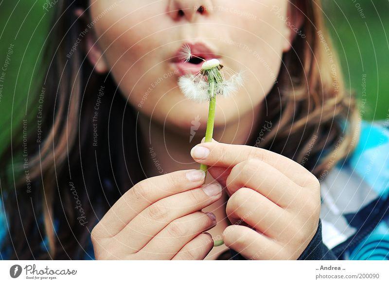 Pusteblume Mensch Frau Pflanze Sommer Hand Freude Erwachsene Gesicht Leben feminin Blüte Finger Blühend Lippen Frieden Löwenzahn