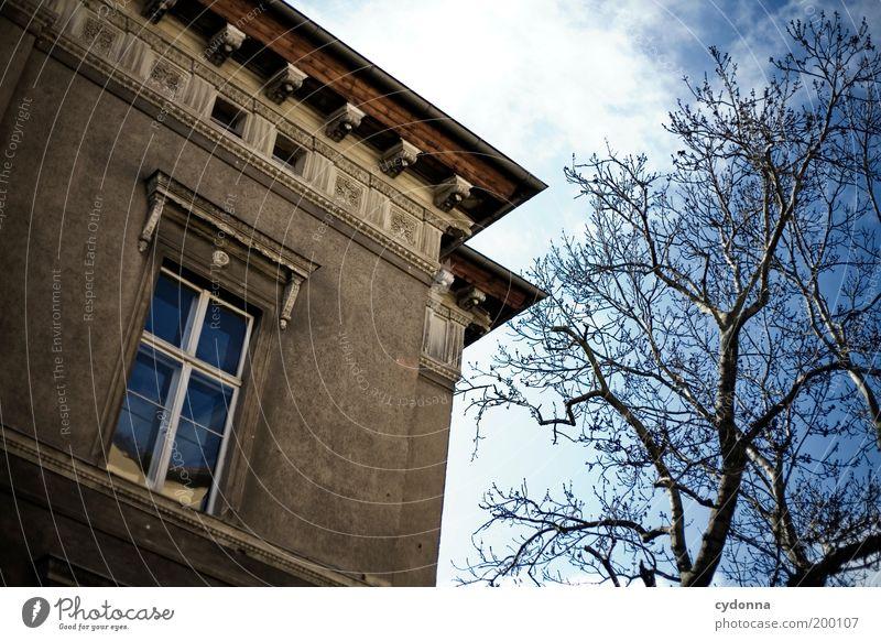 [HAL] Altbau Himmel Baum Senior Haus Wand Fenster Mauer Architektur Design elegant Zeit Fassade Lifestyle ästhetisch Wandel & Veränderung Häusliches Leben