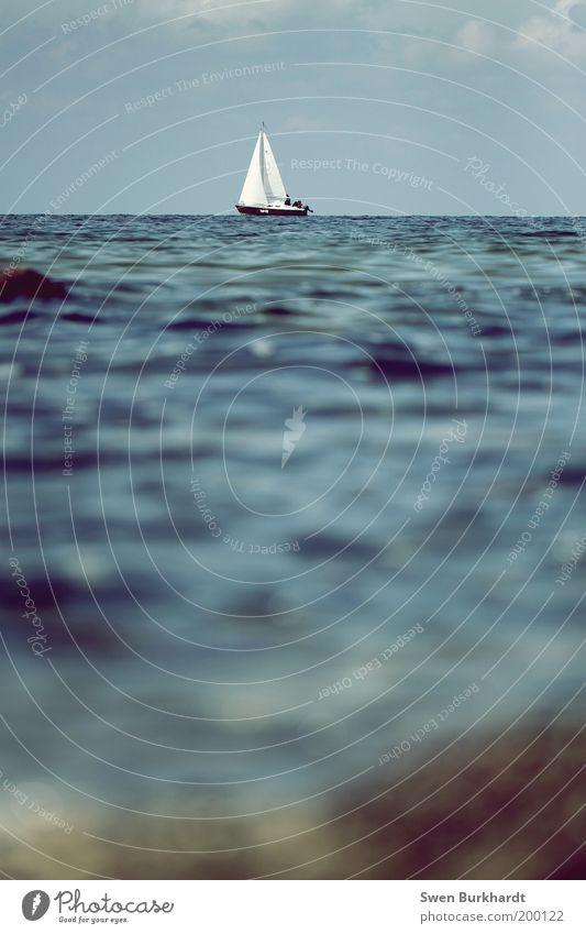 sail away Wasser Meer Sommer Ferien & Urlaub & Reisen Sport Freiheit Wellen Küste Wind Umwelt Horizont Abenteuer Segeln Schifffahrt Ostsee Wasserfahrzeug