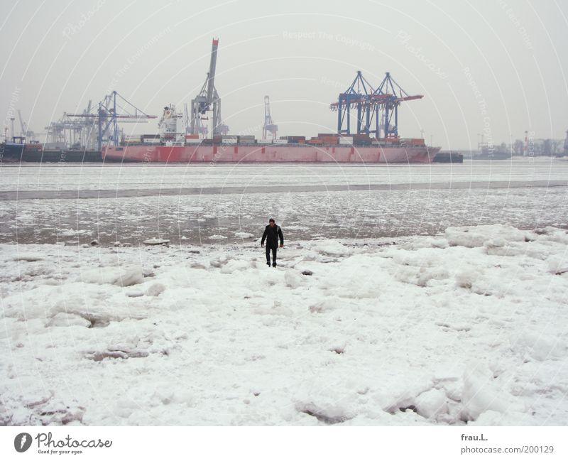 Eiselbe Mensch maskulin Wasser Winter Schnee Flussufer Hafenstadt Schifffahrt Güterverkehr & Logistik Spaziergang Kran Hamburger Hafen Elbe Farbfoto
