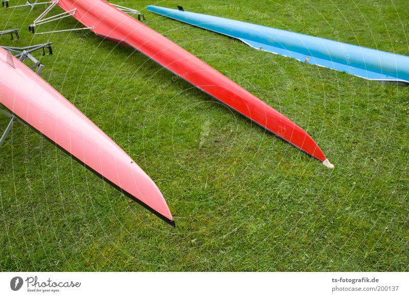 Freddy-Krueger-Nagelstudio? Ferien & Urlaub & Reisen Sommer rot Wiese Gras Sport Linie rosa Spitze 3 Pfeil Sportveranstaltung Konkurrenz Kanu Sportler