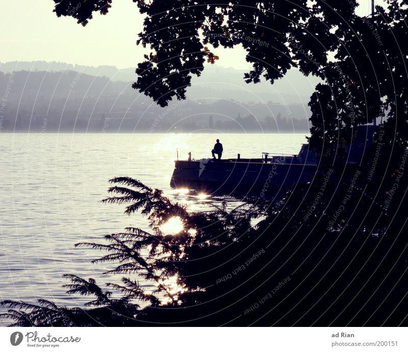 Wo 'five' wohnt Mensch 1 Seeufer Zürich See Stimmung Steg Anlegestelle Wasseroberfläche Reflexion & Spiegelung Urlaubsfoto Erholung Erholungsgebiet Farbfoto