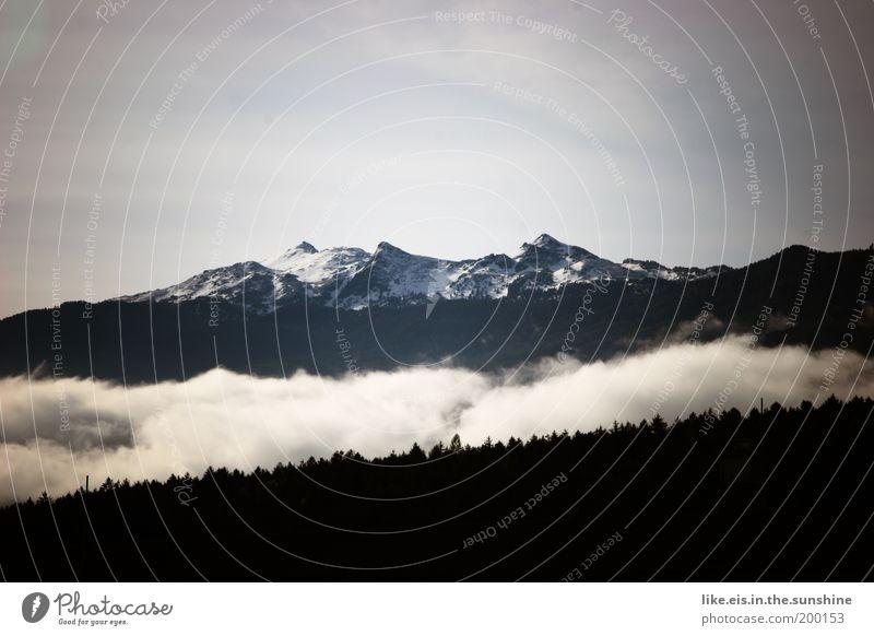 Schwarz- weiß- denkerei Ferien & Urlaub & Reisen Schnee Berge u. Gebirge Himmel Schönes Wetter Wald Hügel Alpen glungezer Schneebedeckte Gipfel ästhetisch