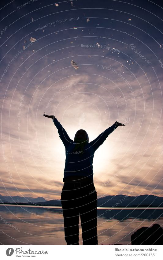 Sternenhimmel fürn Reto Frau Erwachsene Silhouette Himmel Sonne Sonnenlicht Winter Schönes Wetter Hügel Seeufer Bodensee glänzend werfen violett Freude Glück