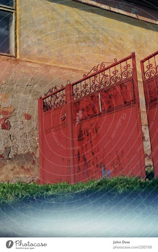 Invasion von unten! Schönes Wetter Gras Haus Einfamilienhaus Bauwerk Fassade Fenster Tür alt kaputt trist rot Verfall Vergänglichkeit Hinterhof Tor