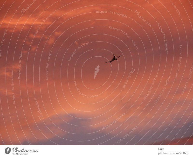 Flugzeug Flugzeug Luftverkehr Gewitter dramatisch