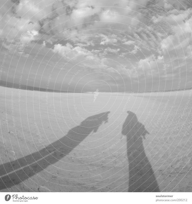 Bewerbungsgespräch Mensch Strand Wolken Landschaft sprechen Sand Küste Stimmung Erde maskulin Abenteuer Kommunizieren Wüste Nordsee lang anonym