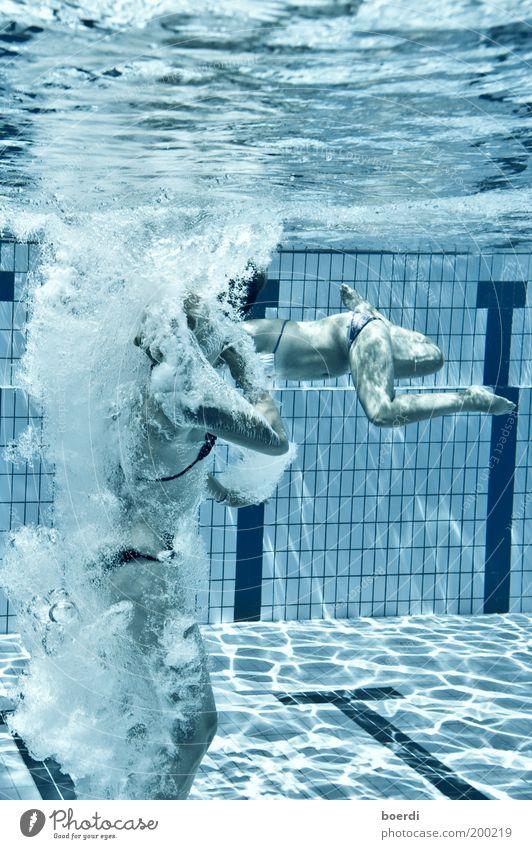 abtauchen Frau Mensch Jugendliche Wasser blau Sommer Freude Ferien & Urlaub & Reisen Sport kalt feminin springen Erwachsene nass