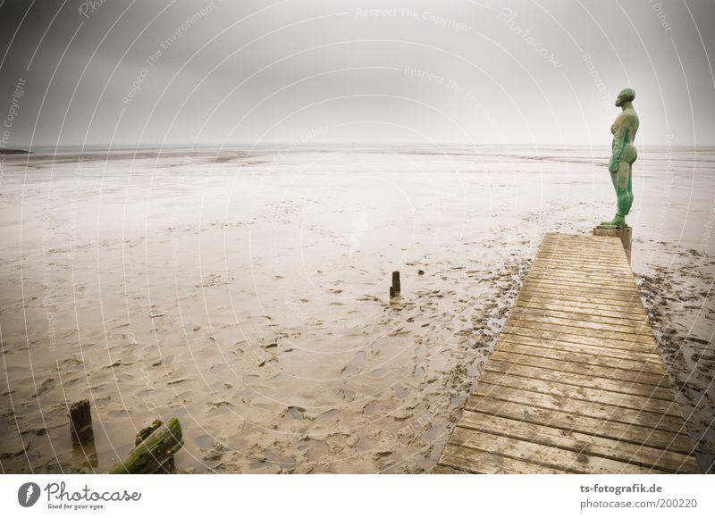 Joy Divisions Planschbecken Mensch grün Strand Ferien & Urlaub & Reisen Wolken Einsamkeit feminin Holz braun Küste Körper nass Horizont Ausflug Tourismus Meer