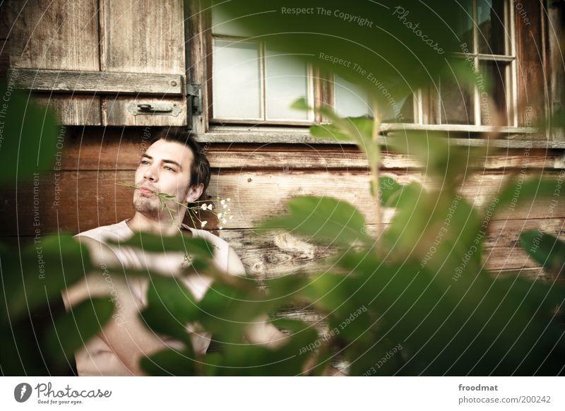 is cool man Mensch Mann Natur Jugendliche Pflanze Sommer Blatt ruhig Erwachsene Fenster Blüte träumen lustig maskulin außergewöhnlich verrückt