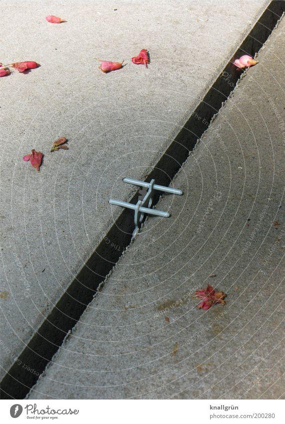 Romantische Fuge Blatt grau Metall rosa Beton silber Lücke Spalte parallel eckig Blütenblatt Strukturen & Formen Betonplatte