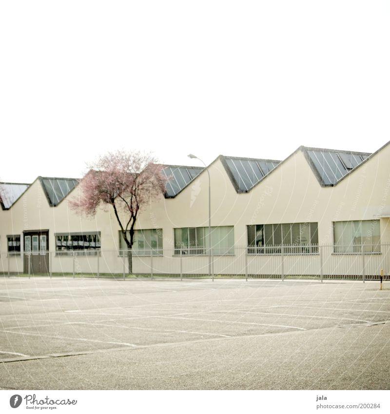 Werkansicht Baum Arbeit & Erwerbstätigkeit Gebäude hell Architektur geschlossen Industrie Platz Industriefotografie Fabrik Dach Sonnenenergie Bauwerk Unternehmen Zaun Wirtschaft