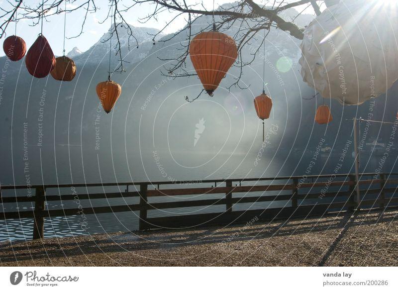 Lampions Wasser Herbst Baum Alpen Berge u. Gebirge Seeufer Stimmung Blendenfleck Laterne Dekoration & Verzierung Ast Zaun Nebel Hallstadt Hallstadtersee