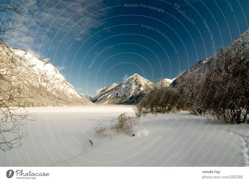 eiskalt Umwelt Landschaft Wasser Winter Schönes Wetter Eis Frost Schnee Pflanze Baum Alpen Berge u. Gebirge Gipfel Schneebedeckte Gipfel Seeufer Einsamkeit
