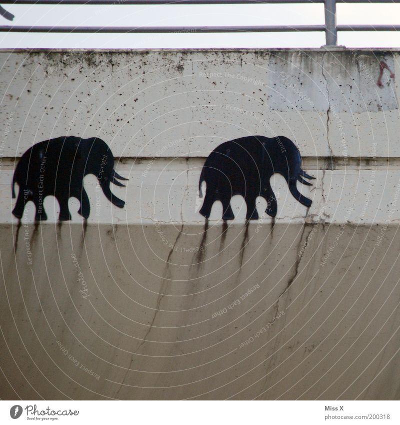 Elefantenrennen Brücke Mauer Wand Fassade Zoo 2 Tier Graffiti überholen Rüssel Farbfoto Gedeckte Farben Außenaufnahme Textfreiraum unten Tag