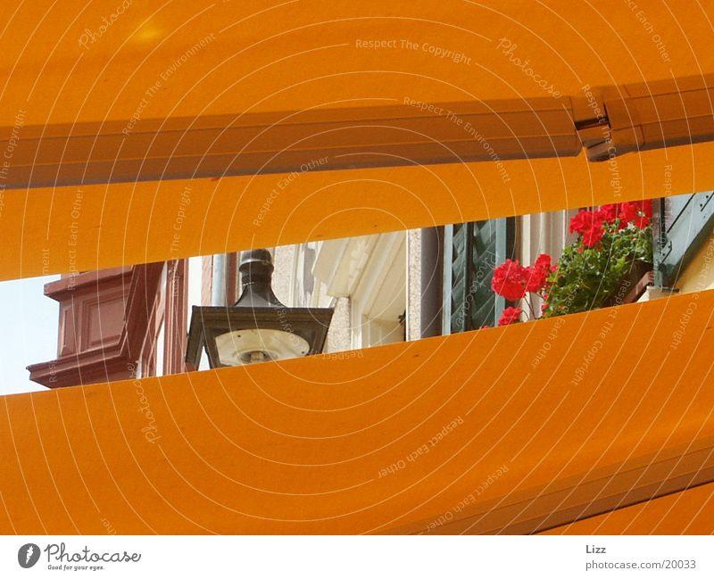Siehst du den Sommer? Kaffee Aussicht Altstadt Ernährung