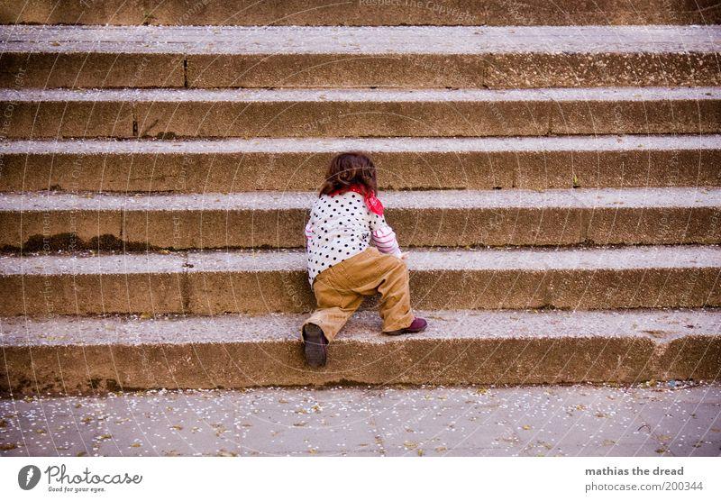 STEILER WEG Mensch Kleinkind Kindheit 1 1-3 Jahre Treppe krabbeln klein entdecken Entschlossenheit anstrengen erobern schön niedlich lernen steigen Farbfoto