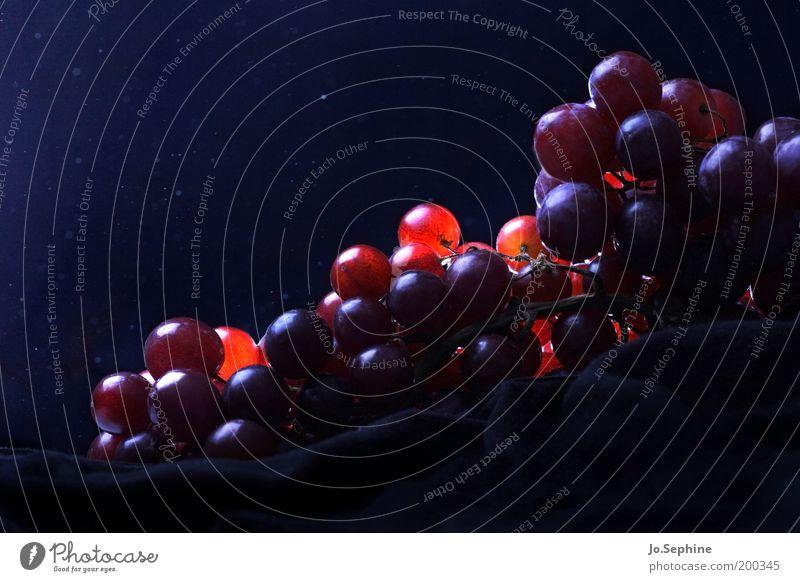 Grapes of Wrath blau rot Gesundheit Gesunde Ernährung Frucht Lebensmittel frisch leuchten süß Wein Foodfotografie lecker saftig Diät Nachthimmel