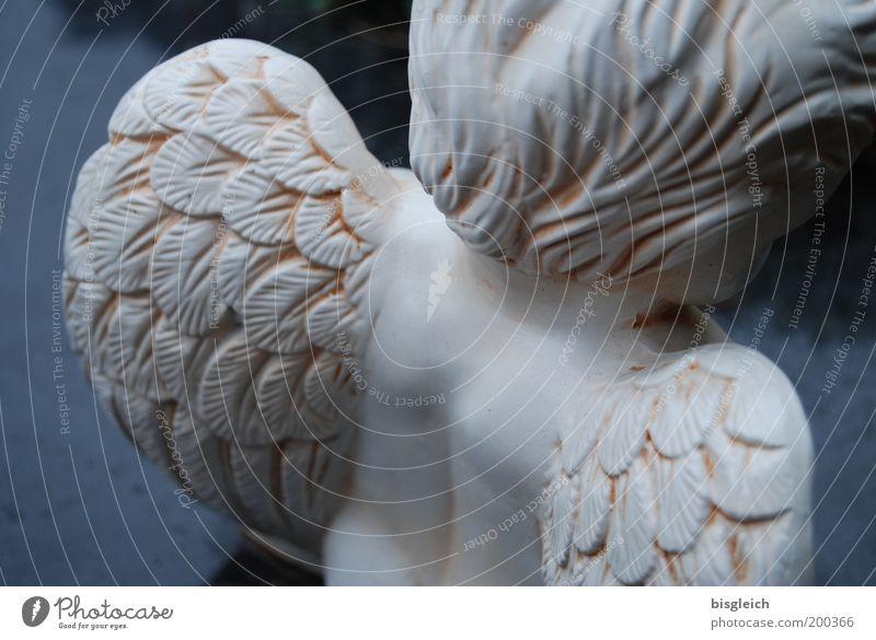 Engel Rücken Flügel Engelsflügel trösten Hoffnung Glaube Traurigkeit Trauer Tod Friedhof Farbfoto Gedeckte Farben Außenaufnahme Detailaufnahme Tag Rückansicht
