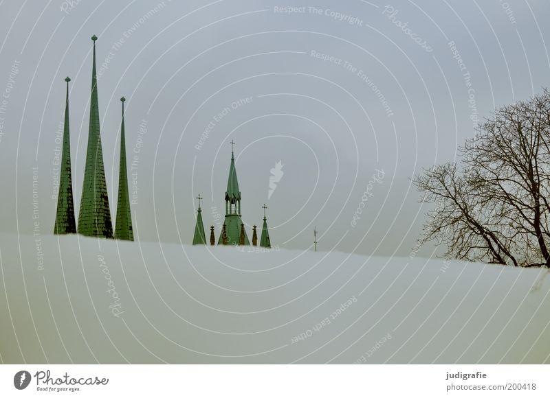 Erfurt Himmel Winter Schnee Baum Park Hügel Stadt Menschenleer Haus Kirche Dom Bauwerk Gebäude Architektur Dach Sehenswürdigkeit kalt Spitze Erwartung