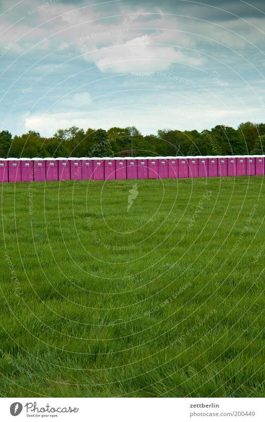 Dixie Himmel Sommer Wiese Gras Park Feld Rasen violett Sportrasen Toilette Konzert Veranstaltung Reihe viele Festspiele