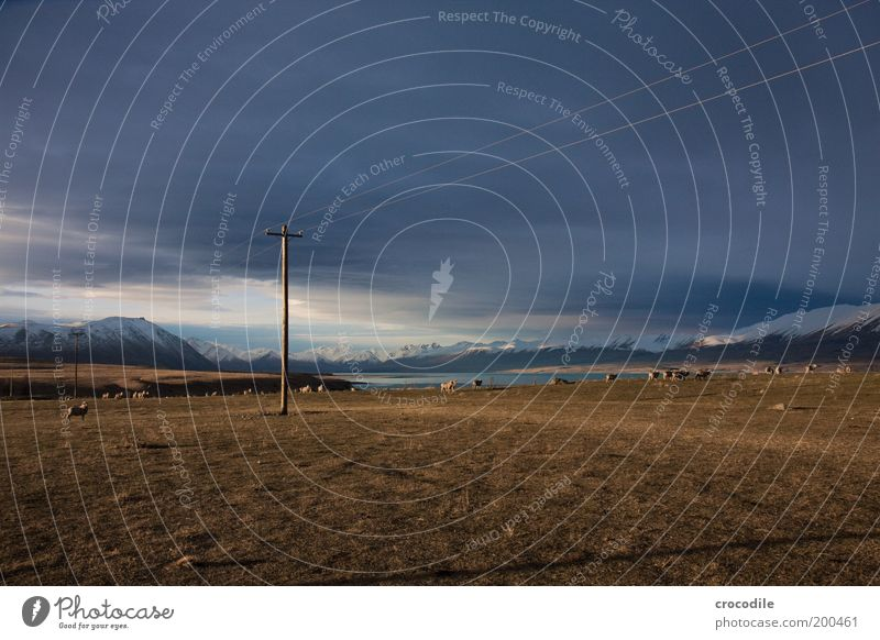 New Zealand 44 Telekommunikation Umwelt Natur Landschaft Erde Gewitterwolken Horizont Frühling schlechtes Wetter Unwetter Sturm Eis Frost Schnee Pflanze Gras