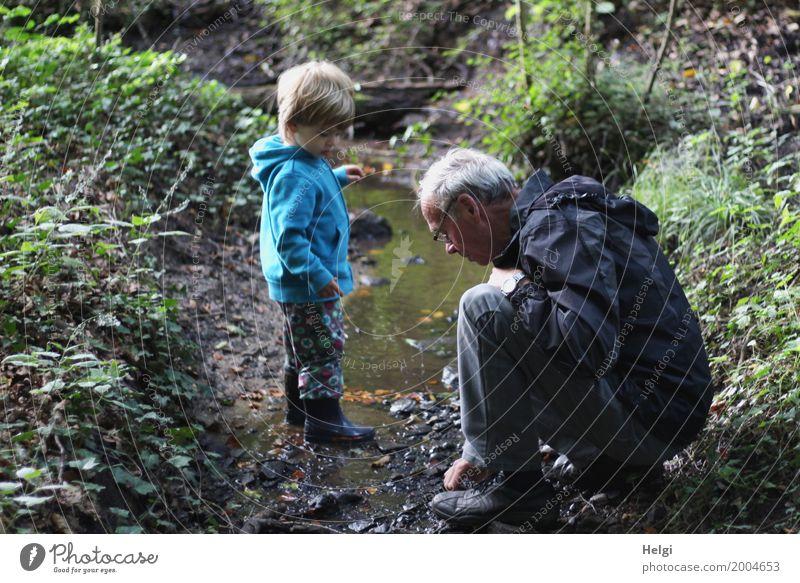 kleiner Junge und sein Opa sind auf Entdeckungstour an einem Bach im Wald Mensch maskulin Kleinkind Männlicher Senior Mann Großvater Kindheit 2 3-8 Jahre