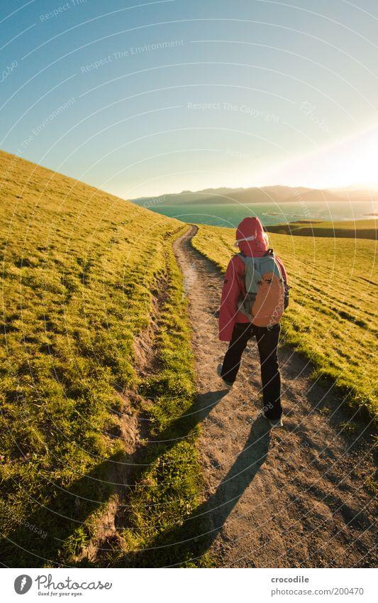 New Zealand 50 Ferien & Urlaub & Reisen Ferne Freiheit Expedition Sonne Meer Berge u. Gebirge wandern Mensch 1 Umwelt Natur Landschaft Wolkenloser Himmel