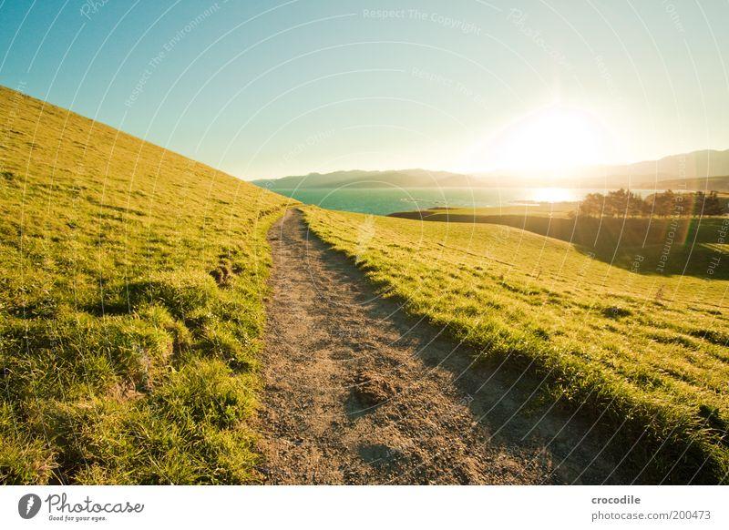 New Zealand 51 Umwelt Natur Landschaft Wolkenloser Himmel Sonnenaufgang Sonnenuntergang Sonnenlicht Schönes Wetter Wiese Hügel Alpen Berge u. Gebirge Gipfel