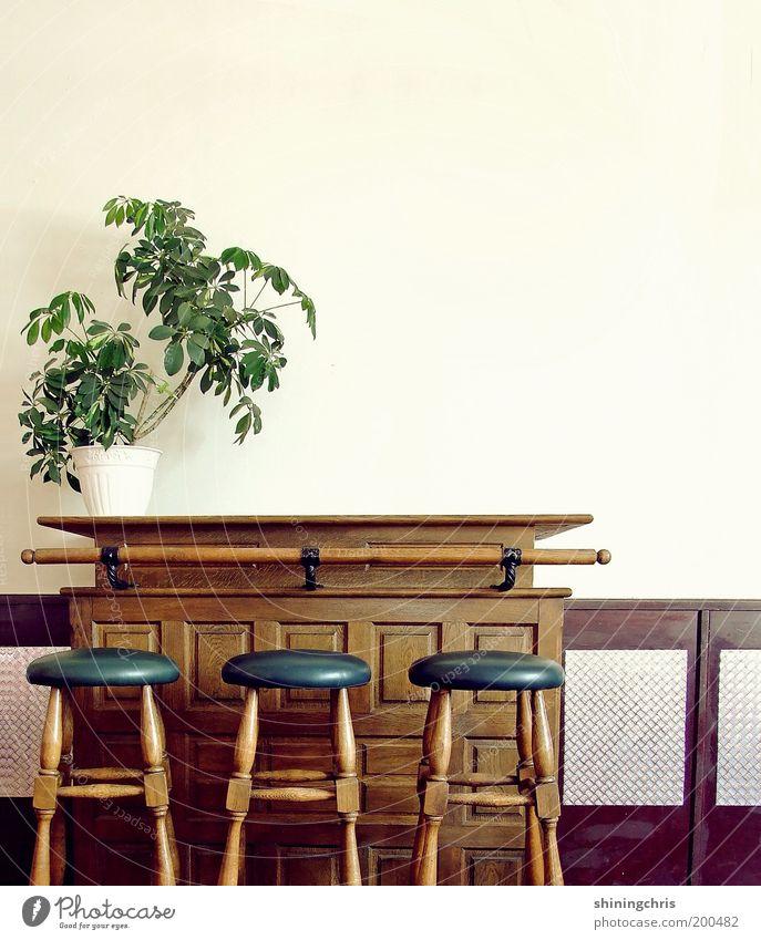 vor dem rausch. alt grün blau Pflanze Stil Holz braun Design geschlossen leer Bar Gastronomie Innenarchitektur Restaurant Möbel historisch