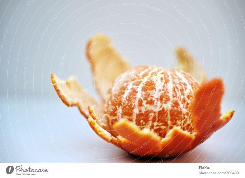 Mandarinen-Striptease weiß rot Ernährung gelb Orange Lebensmittel Frucht ästhetisch süß Diät Vitamin Bioprodukte saftig Hülle entkleiden Fasten